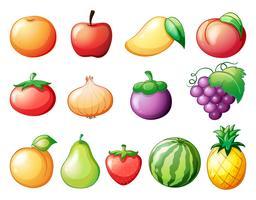 Diversi tipi di frutta vettore