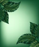Foglie verdi vettore