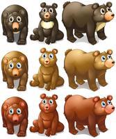 Collezione di orsi vettore