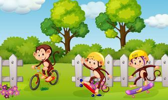 Un gruppo di scimmie giocose vettore