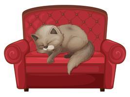 Un gatto che dorme sul divano vettore