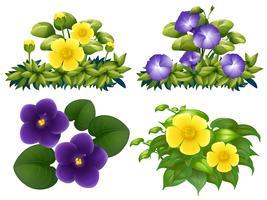 Diversi tipi di fiori nel bush vettore