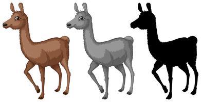 Set di caratteri alpaca vettore