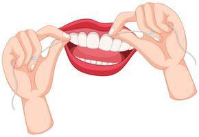 denti flossing su sfondo bianco vettore