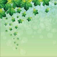 Una carta speciale con sfondo verde