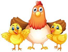 Carattere di pollo e pulcino vettore