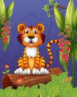 Una tigre che si siede in un bosco