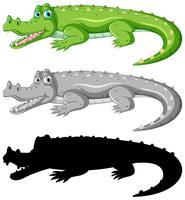 Set di caratteri di coccodrillo vettore