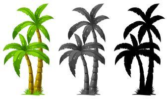 Set di palma vettore