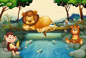 Animali selvaggi sul fiume vettore