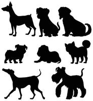 Diversi tipi di cani in silhouette