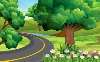 Strada nel parco vettore