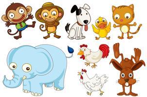 Una serie di animali piatti vettore