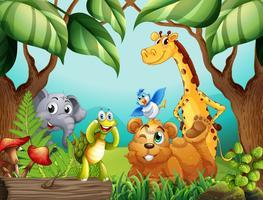 Animali selvaggi in natura vettore
