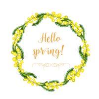 Una corona decorativa di fiori e foglie di mimosa e gli elementi della corona separatamente. Primavera e fiori gialli delicati di estate. Oggetti isolati su una priorità bassa bianca. vettore