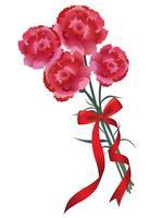 Mazzo di garofano con un nastro rosso per la festa della mamma, compleanno, matrimonio, ecc. vettore