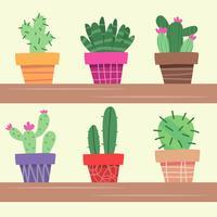 Pianta del cactus in vaso di fiori. Decorazione casa pianta. Illustrazione vettoriale in stile piatto