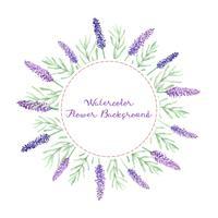 sfondo di fiori di lavanda dell'acquerello