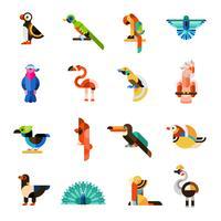 Set di uccelli esotici vettore