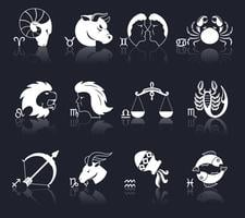 icone dello zodiaco bianche vettore