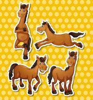 Cavalli vettore