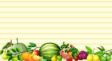 Disegno di carta con frutta fresca vettore