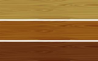 Modello di legno vettore