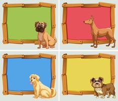 Banner design con cani da compagnia vettore