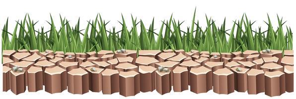 Terra asciutta ed erba verde vettore