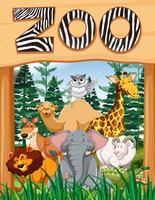 Animali selvatici sotto il segno dello zoo