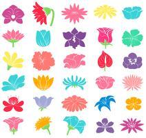 Diversi disegni floreali vettore