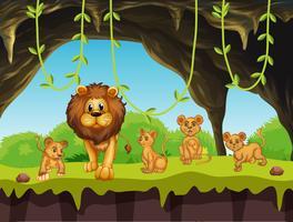 Famiglia Lion in natura vettore