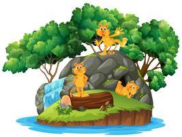 tigre nella grotta dell'isola