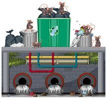 Smaltimento dei rifiuti non sanitari con ratto vettore