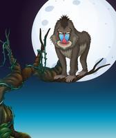 Un babbuino sulla scena notturna dell'albero vettore