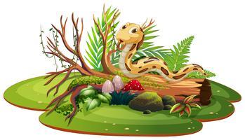 Serpente nella natura isolata vettore