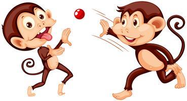 Scimmia che gioca palla su fondo bianco vettore