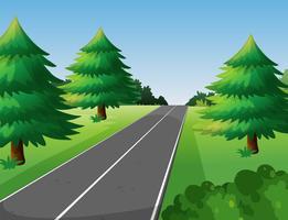 Scena con alberi di pino lungo la strada vettore