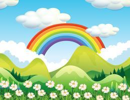 Una scena di foresta e arcobaleno vettore