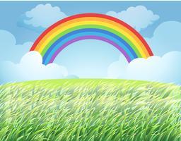 un arcobaleno sopra la risaia vettore