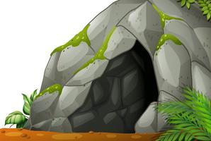 Grotta vettore