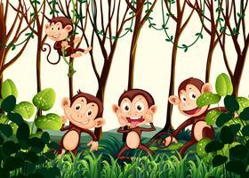 Scimmia che vive nella giungla vettore