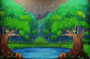 Scena di sfondo con foresta sotto la pioggia
