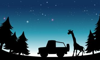 Safari silhouette vettore