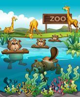 Animale allo zoo vettore