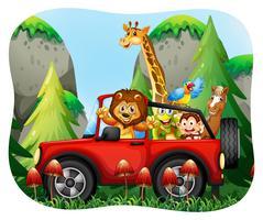 Animali selvaggi che cavalcano la jeep