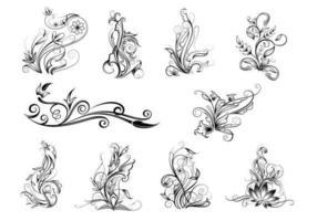 Pacchetto di vettore di ricciolo ornamentale