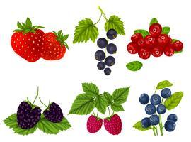 Set di frutti di bosco freschi