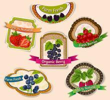 Set di emblemi di frutti di bosco