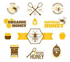 Etichetta miele ape colorata vettore